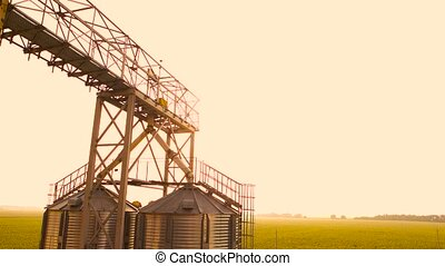Tanks for the storage of grain standing in the field. White...