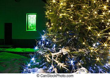 tanne, licht, nacht, baum, jahreswechsel, beleuchtung, weihnachten