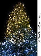tanne, nacht, baum zündet, hintergrund, jahr, neu , weihnachten
