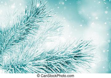 tanne, weihnachtsbaum, zweig