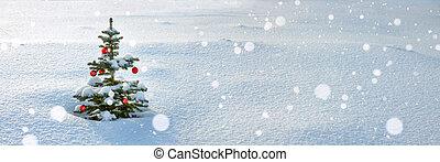 tanne, winter, panorama, baum, jahr, neu , weihnachten