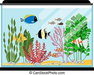 tanque, pez, ilustración, o, aquarium., vector, agua salada, peces, de agua dulce, caricatura
