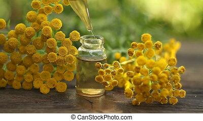 tansy, essentiële olie, in, mooi, fles, op, tafel