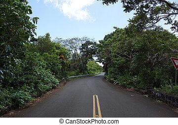 Tantalus mountain one lane bridge on Round Top drive ...