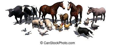 tanya, állatok
