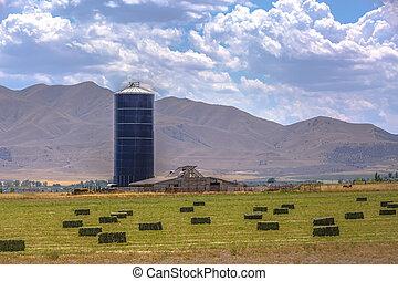 tanya, gabona, völgy, utah, siló