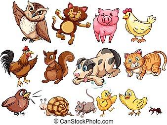 tanya, kedvenc, különböző, gépel, állat