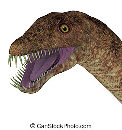 Tanystropheus Dinosaur Head