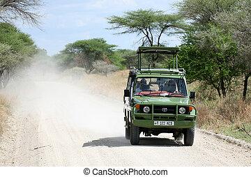 tanzania, afryka, krajowy, -, tarangire, park., safari