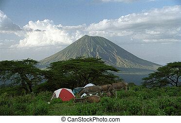tanzania, campamento