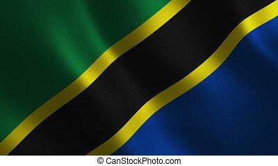 Tanzania flag waving 3d. Abstract background. Loop...