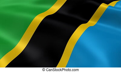 Tanzanian flag in the wind. Part of a series.