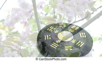 Tao symbol and cherry blossom - Tao symbol and Japanese...