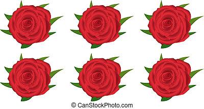 hintergrund rosen schwarz rot muster rosen muster. Black Bedroom Furniture Sets. Home Design Ideas