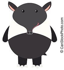 Tapir on white background