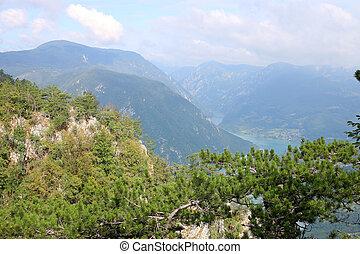 Tara mountain west Serbia landscape