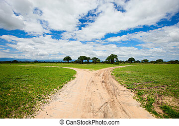 tarangire, tansania, landschaftsbild