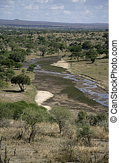 Tarangire, Valley and safari camp in Tanzania