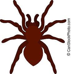 Tarantula, illustration, vector on white background.