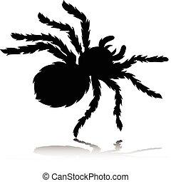 tarantula vector silhouettes