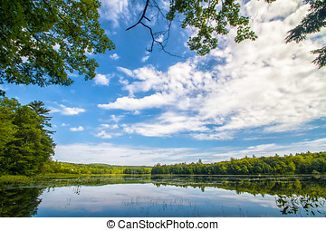 tard, été, lac