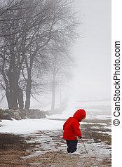 tard, hiver, promenade
