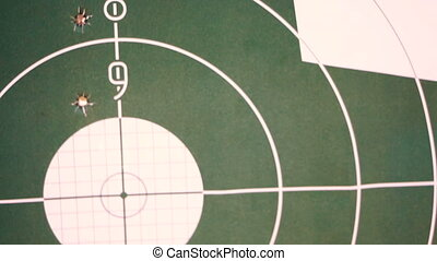 Target. Target with holes from a shot from a pistol.