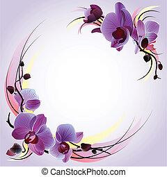 tarjeta de felicitación, con, violeta, orquídeas