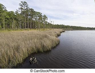 Tarkiln Bayou at Perdido Bay in Florida - Water view at...