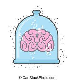 tarro, hhuman, cerebro, vector, experiment., illustration., científico