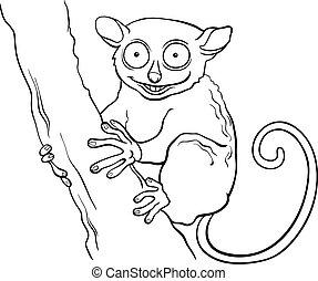 tarsier, libro colorante, animale, cartone animato