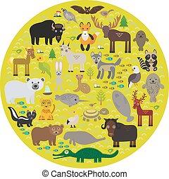 tartaruga, alligator., lebre, selo, cova, alce, cavalo, raposa, parakeet, bisonte, cabra, gannet, águia, montanha, urso, cobra, polar, muskox, perdiz, peixe boi, morcego, onça pintada, víbora, pele, pardo, vetorial, lobo, guaxinim, gambá, narwhal