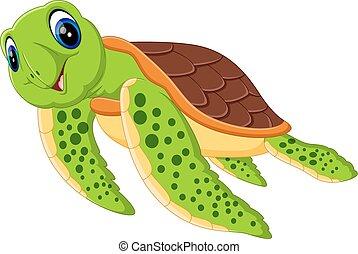tartaruga, carino