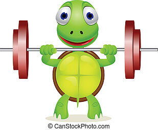 tartaruga, engraçado, elevador, barbell