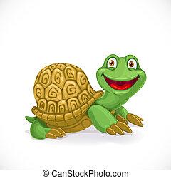 tartaruga, isolato, fondo, bambino, bianco, cartone animato