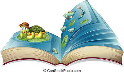 tartaruga, livro