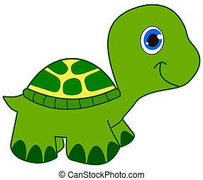 tartaruga, sorridente, verde, giovane