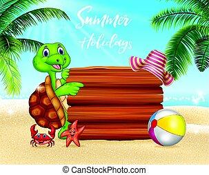 tartaruga, verão, em branco, fundo, sinal
