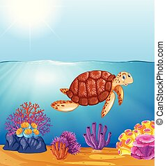 tartaruga, verde, mar, oceânicos
