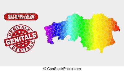 tartomány, térkép, észak, színezett, külső nemi szervek,...
