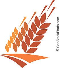tarwe, gouden, pictogram, landbouwkunde veld
