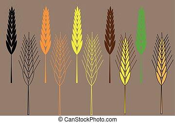 tarwe, illustratie, set, vector, gerst, oor, pictogram