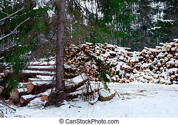 tas, bois construction