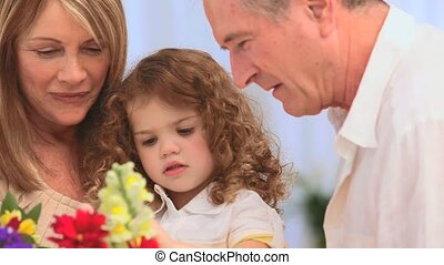 tas, confection, grands-parents, fleurs