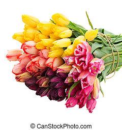 tas, fleurs, tulipes