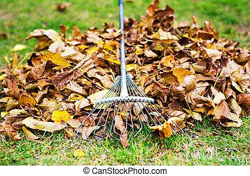 tas, râteau, baissé, pousse feuilles, déménagement