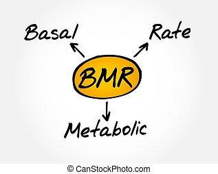 tasa, metabolic, plano de fondo, bmr, -, siglas, concepto, basal