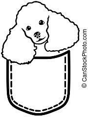 tasche, franzoesischer pudel, hund
