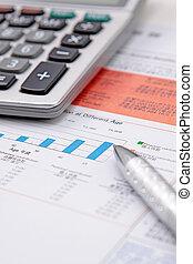 Taschenrechner, Stift, Tabelle, Bestand
