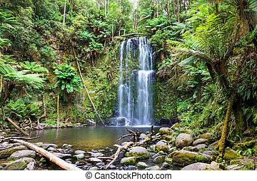 tasmania, vízesés